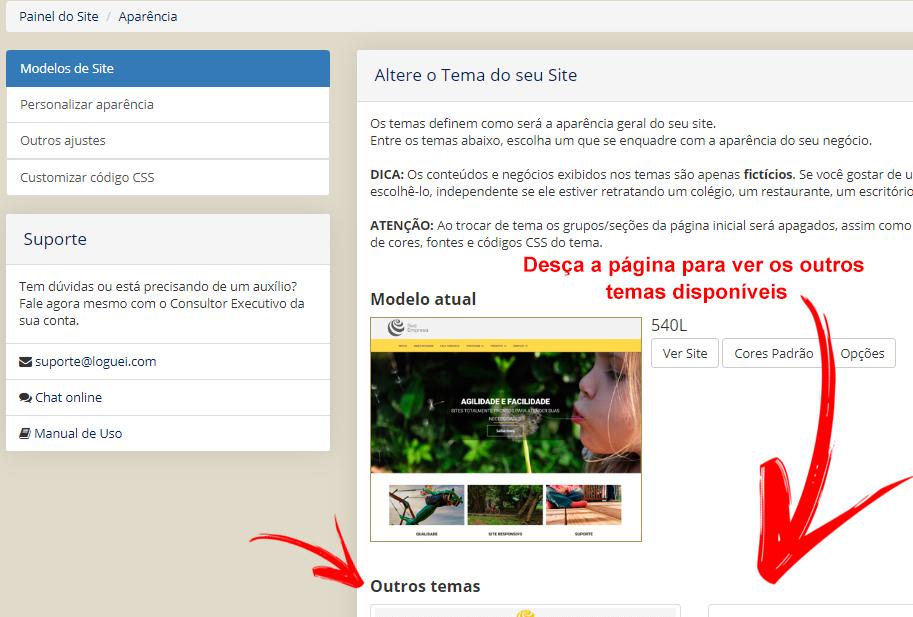 Escolha do novo modelo de site